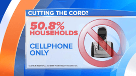 Most US homes now have cellphones only