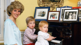 Prince William and Prince Harry honor legacy of Princess Diana