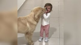 Sweet baby and dog have the most adoring friendship