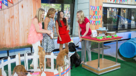 How to throw a birthday party for your dog (like TODAY's 1-year-old Charlie!)