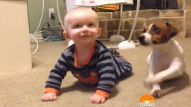 Watch this adorable dog try to teach baby how to crawl