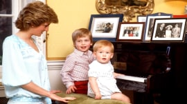 Princes William and Harry recall 'Diana, Our Mother' in new documentary
