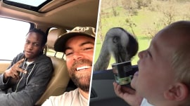 Highs and Lows: Man helps buy stranger a car, toddler's reaction to ostriches