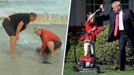 Highs and Lows: Kerry Sanders saves dolphins, kid mows White House lawn