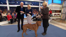 John O'Hurley previews the National Dog Show and its furry contestants