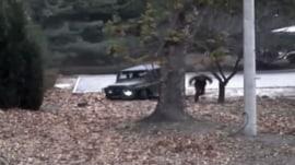 North Korean soldier's daring dash across DMZ caught on camera
