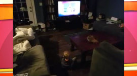 Watch baby boy excitedly crawl to watch 'Jeopardy'