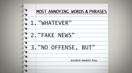 The most annoying word of 2017 is…