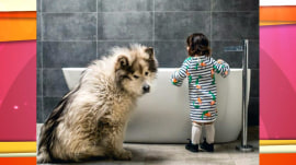 This little girl and her great big malamute are inseparable