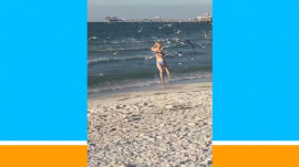 Watch this friendly beachgoer get ambushed by seagulls
