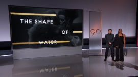 'Shape of Water' leads Oscar nominations with 13, including Best Picture