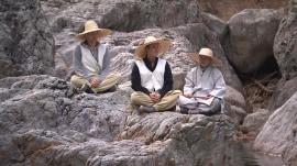 A spiritual journey through old Korea: Tea ceremony, mountain temple