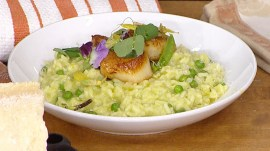 Make green pea risotto with scallops and Parmesan to celebrate spring