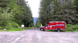 Cougar attack in Washington state leaves 1 dead, 1 injured