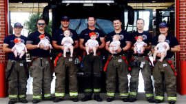These 7 firefighters all become fathers within 15 months of each other