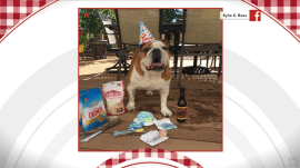 TODAY celebrates beloved pet birthdays: September 19, 2018