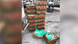 Cocaine found in shipment of bananas donated to Texas prison