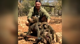 Idaho commissioner allegedly kills 14 animals, faces calls to resign