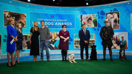 Meet 3 fearless canine finalists in American Humane Hero Dog Awards