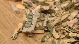 2-year-old sends $1,060 in cash through shredder