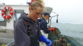 How these female lobsterman are breaking stereotypes