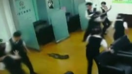 Snake drops down from ceiling in China bank
