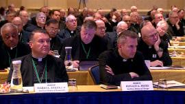 Vatican asks US bishops to delay votes on sex abuse crisis