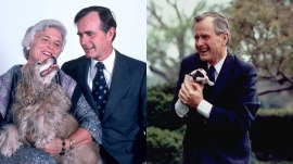 George H.W. Bush's love for dogs shown in stunning photos, videos