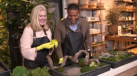 Craig Melvin takes his passion for plants to Westport's Terrain