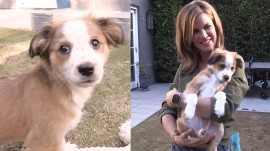 Natalie Morales introduces her new puppy at her home