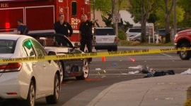 Driver mows down 8 pedestrians in possibly intentional crash
