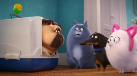See a sneak peek of 'The Secret Life of Pets 2'