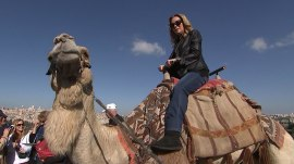 Watch KLG ride a camel in Israel (and get muddy, too)