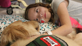 Therapy dogs bring joy, happiness back to kids at children's hospital