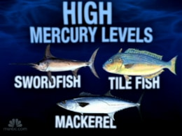 Mercury poisoning no fish tale video on for Why do fish have mercury