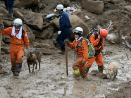 Image: Search for missing after landslides kills 39 in Japan