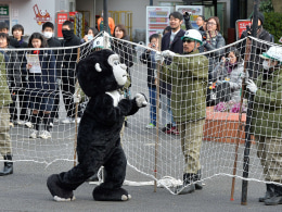 Image: JAPAN-ANIMAL-OFFBEAT