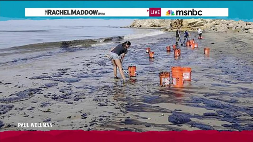 Rachel maddow beach bing images for Rachel s palm beach
