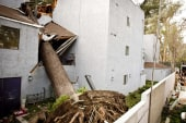 Destructive Calif. winds expected to continue