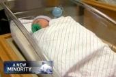 White Babies, the new minority