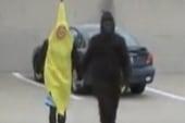 Banana attacks gorilla, man bites dog