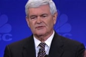 Gingrich goes after Occupy Wall Street