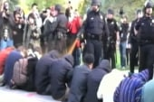 Pepper spray video 'iconic moment' of OWS