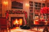Obama's holiday card under fire