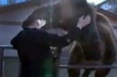 TV reporter bitten in head by camel