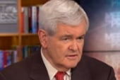 Newt Gingrich too awesome for campaigning