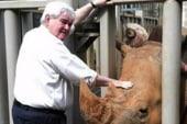Bashir: 'Dr. Do-Little' Gingrich makes...