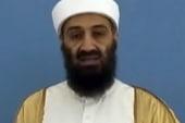 Revelations revealed in Bin Laden files