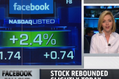Fallout from Facebook IPO