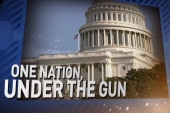 One nation, under the gun?